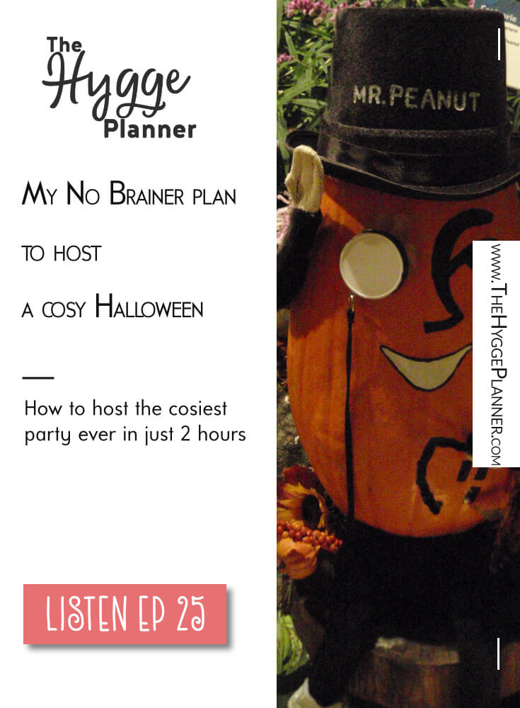 The nitty gritty definition of Cosiness: The Hygge Planner Show